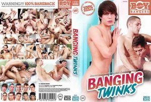 bbb025-BangingTwinks.jpg