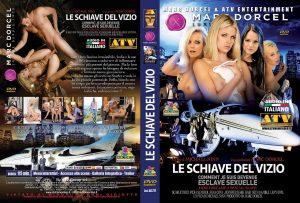 dd217-LeSchiaveDelVizio.jpg