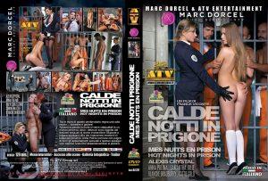 dd231-CaldeNottiInPrigione.jpg