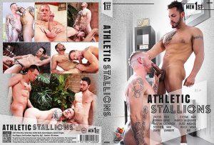 mfs060-AthleticStallions.jpg